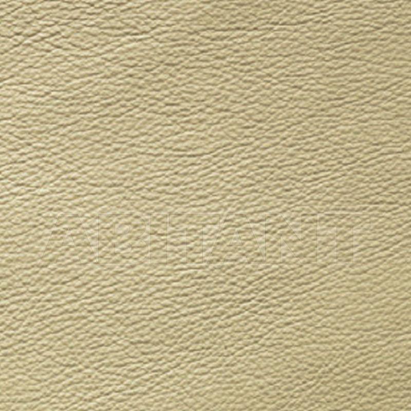 Buy Upholstery  Brunello1974 Leather BP433