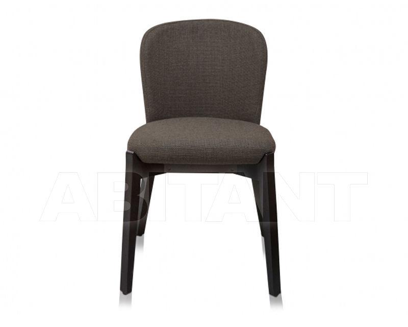 Buy Chair ELICIA Versmissen 2020 ELICIAPC16