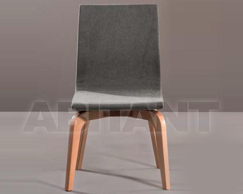 Buy Chair Piermaria 2020 elvira