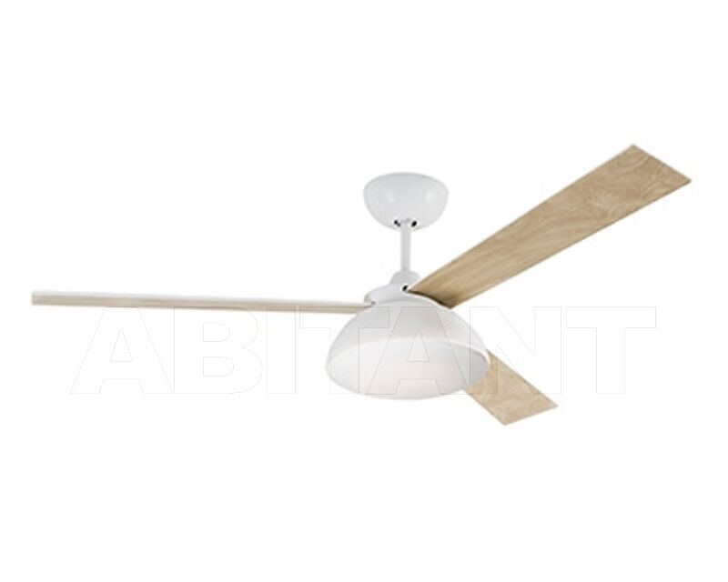 Buy Light RODAS Faro 2018 33522