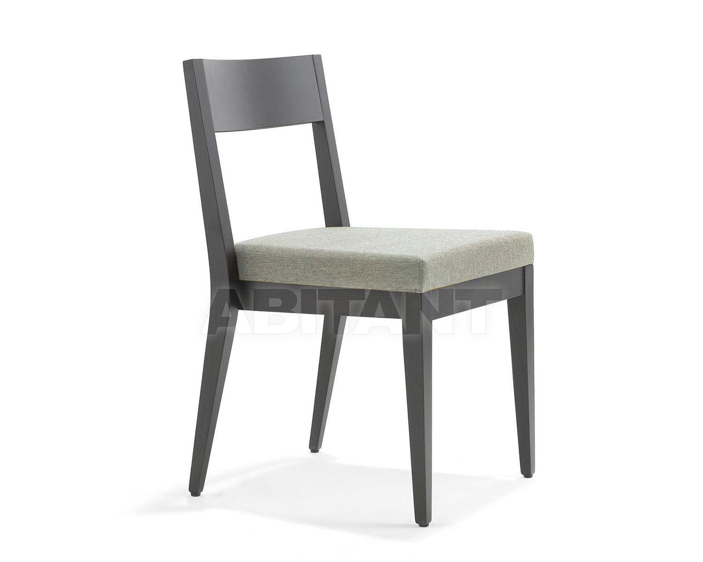 Buy Chair Accento Aloe Aloe S